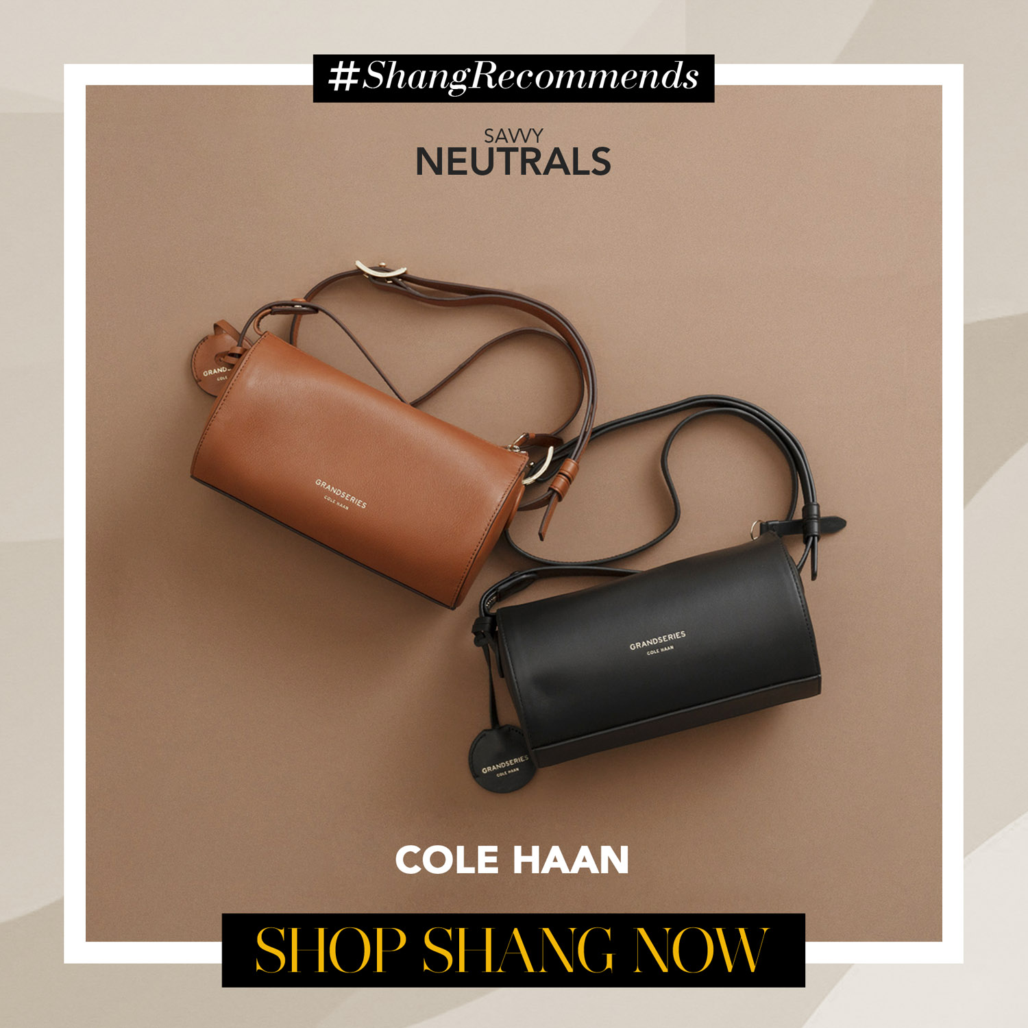 Cole Haan Brown and Black Mini Bags