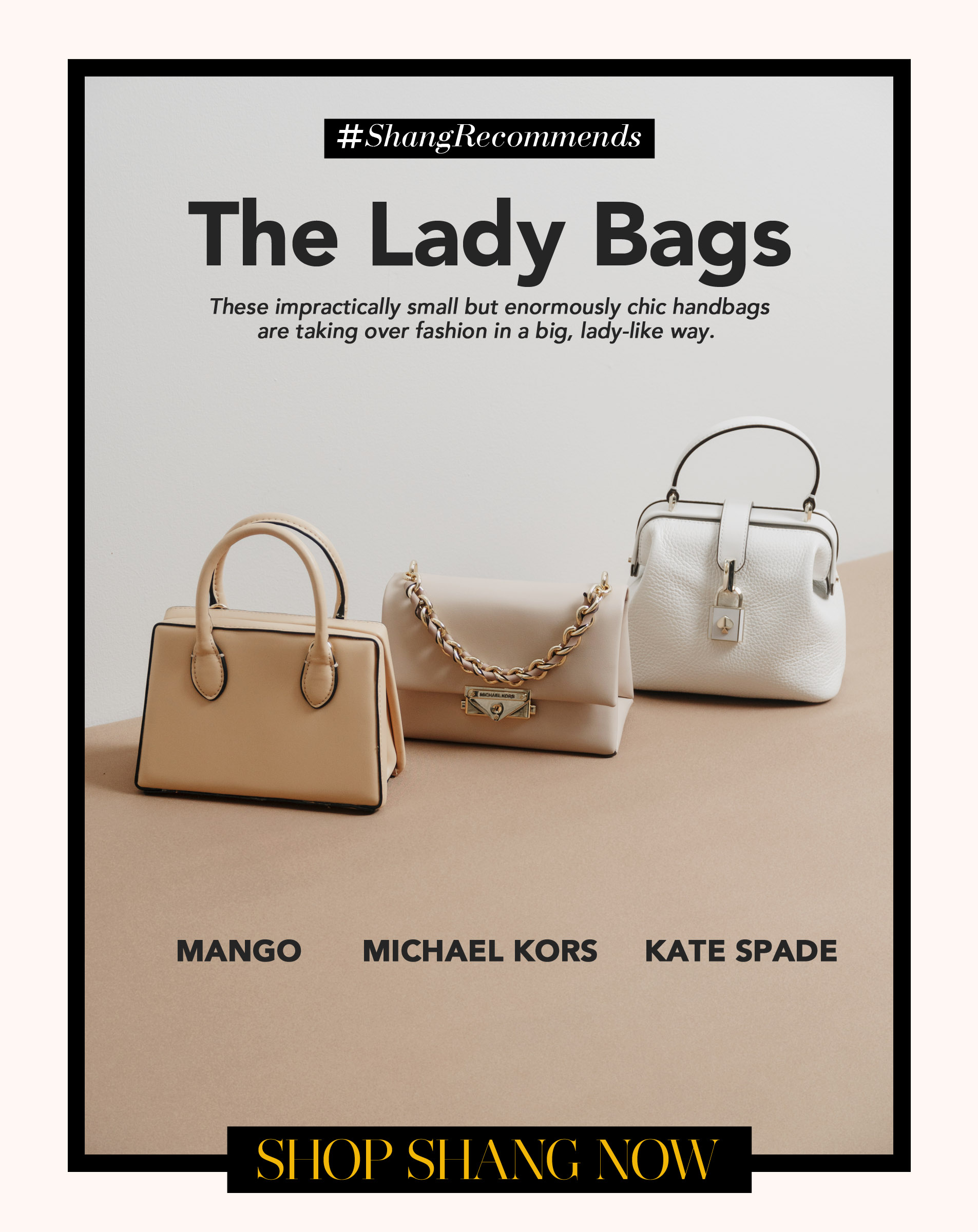 Lady Bags Poster