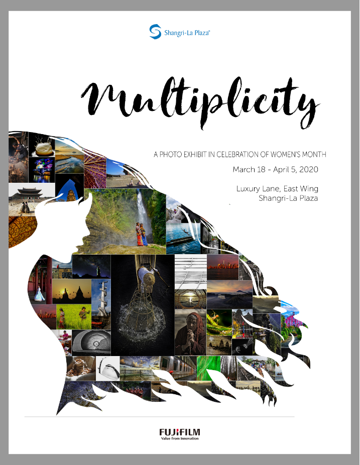 Multiplicity Poster