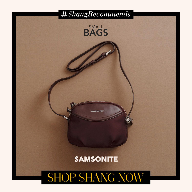 Samsonite Brown Crossbody bag