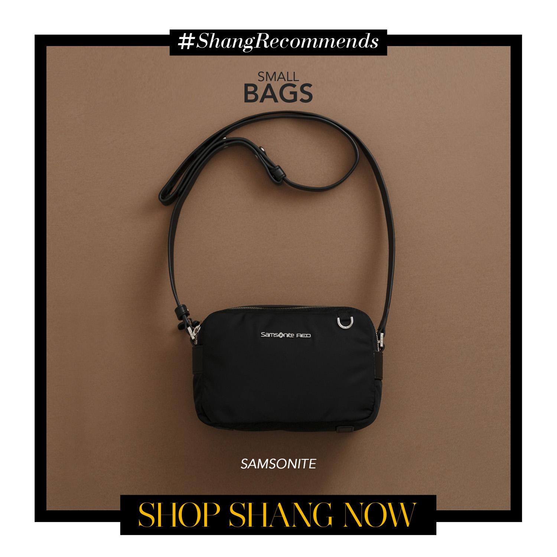 Samsonite Small Bag