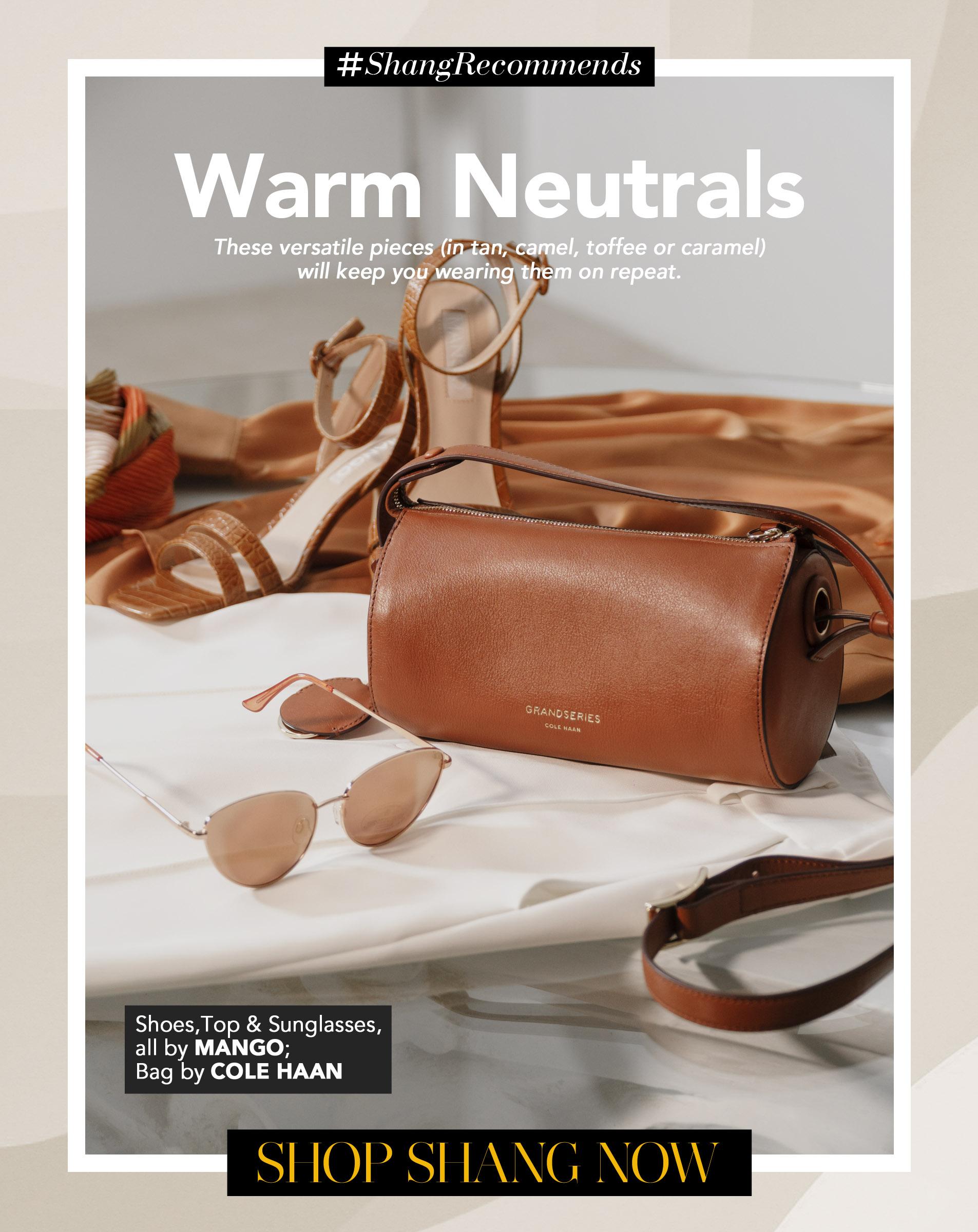 Warm Neutrals Poster