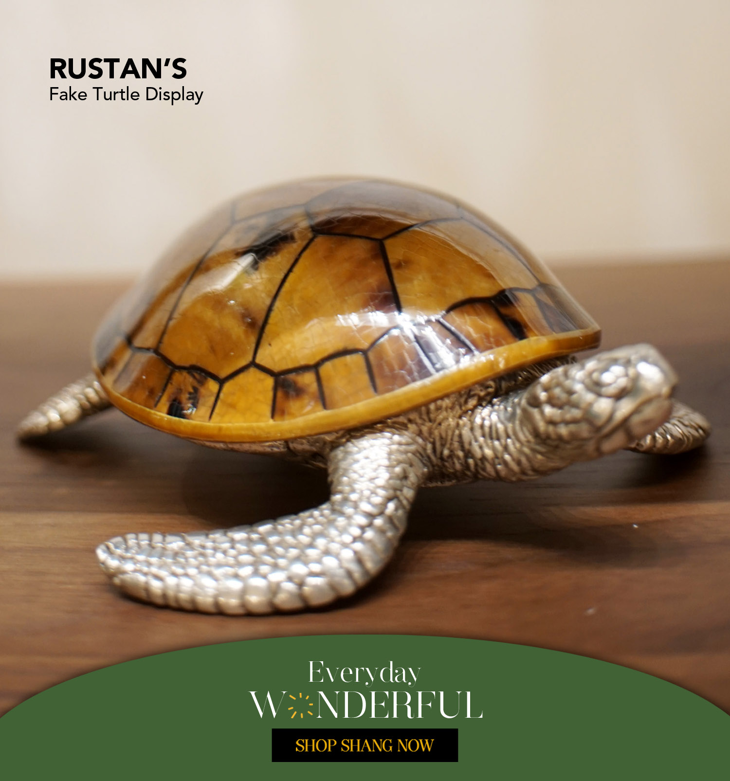 Fake Turtle Display from Rustan's